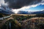 Matthias Aletsee - Landscape - Landscape